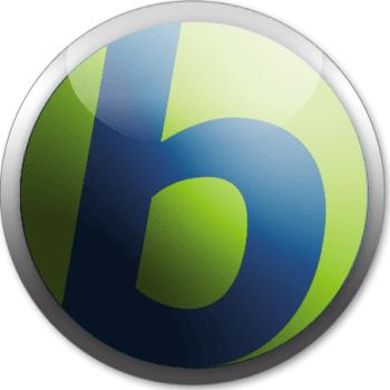 Babylon Pro NG 11.0.1.2 License