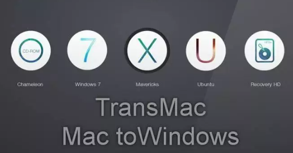 TransMac 12.6 Crack plus License key 2020 Latest (Torrent)